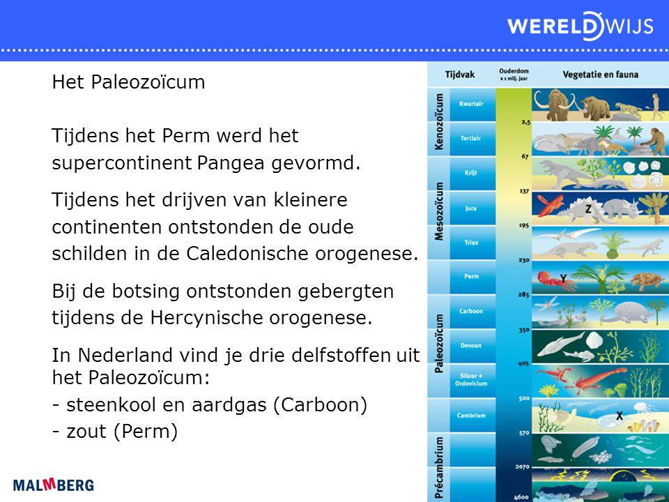 Het Paleozoïcum Tijdens het Perm werd het supercontinent Pangea gevormd. Tijdens het drijven van kleinere continenten ontstonden de oude schilden in d