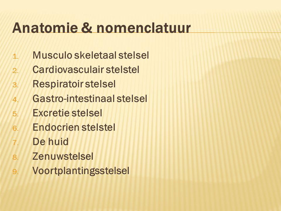 Anatomie & nomenclatuur 1. Musculo skeletaal stelsel 2. Cardiovasculair stelstel 3. Respiratoir stelsel 4. Gastro-intestinaal stelsel 5. Excretie stel