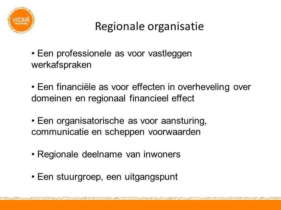 Regionale organisatie Een professionele as voor vastleggen werkafspraken Een financiële as voor effecten in overheveling over domeinen en regionaal financieel effect Een organisatorische as voor aansturing, communicatie en scheppen voorwaarden Regionale deelname van inwoners Een stuurgroep, een uitgangspunt