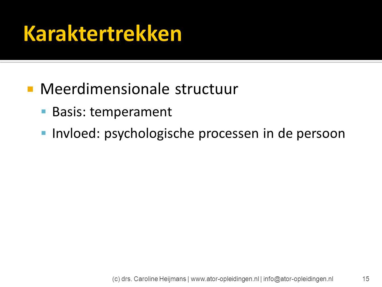  Meerdimensionale structuur  Basis: temperament  Invloed: psychologische processen in de persoon (c) drs. Caroline Heijmans | www.ator-opleidingen.