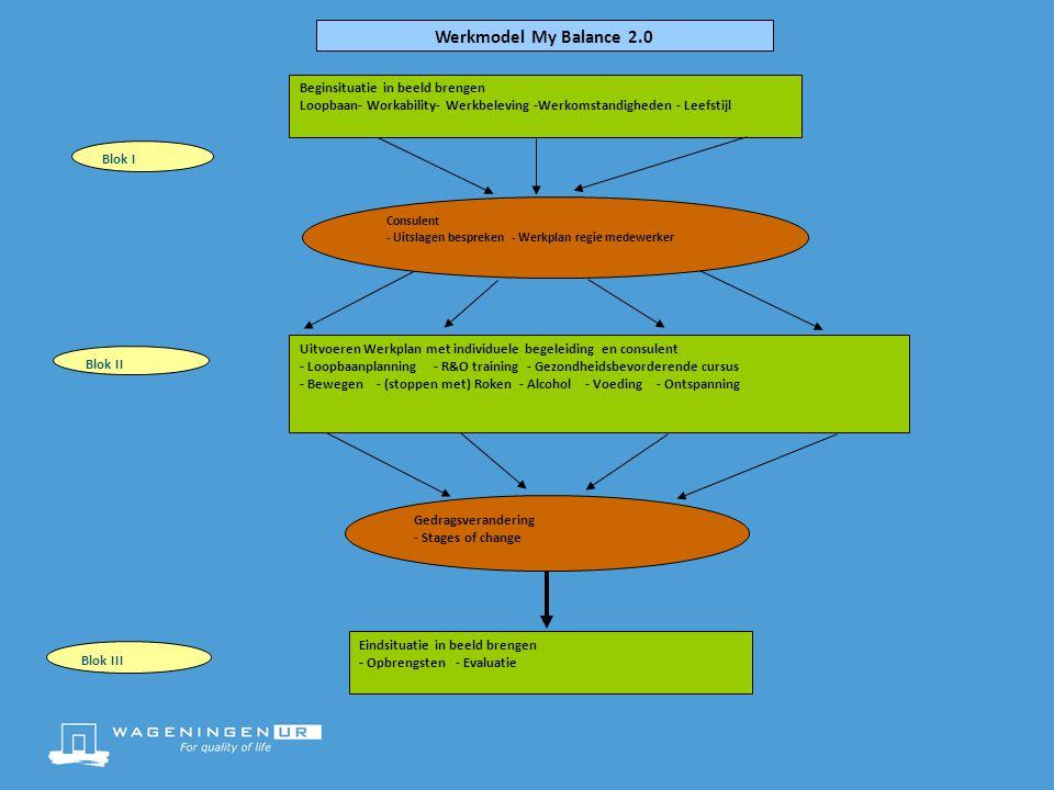 Beginsituatie in beeld brengen Loopbaan- Workability- Werkbeleving -Werkomstandigheden - Leefstijl Consulent - Uitslagen bespreken - Werkplan regie me