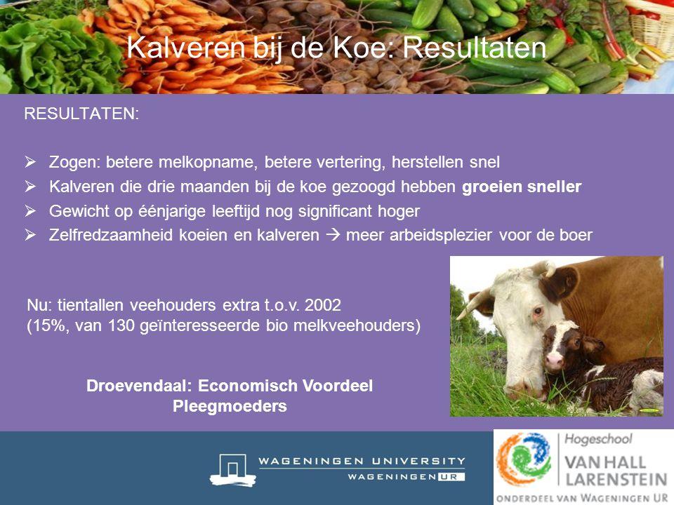 Kalveren bij de Koe: Resultaten RESULTATEN:  Zogen: betere melkopname, betere vertering, herstellen snel  Kalveren die drie maanden bij de koe gezoo