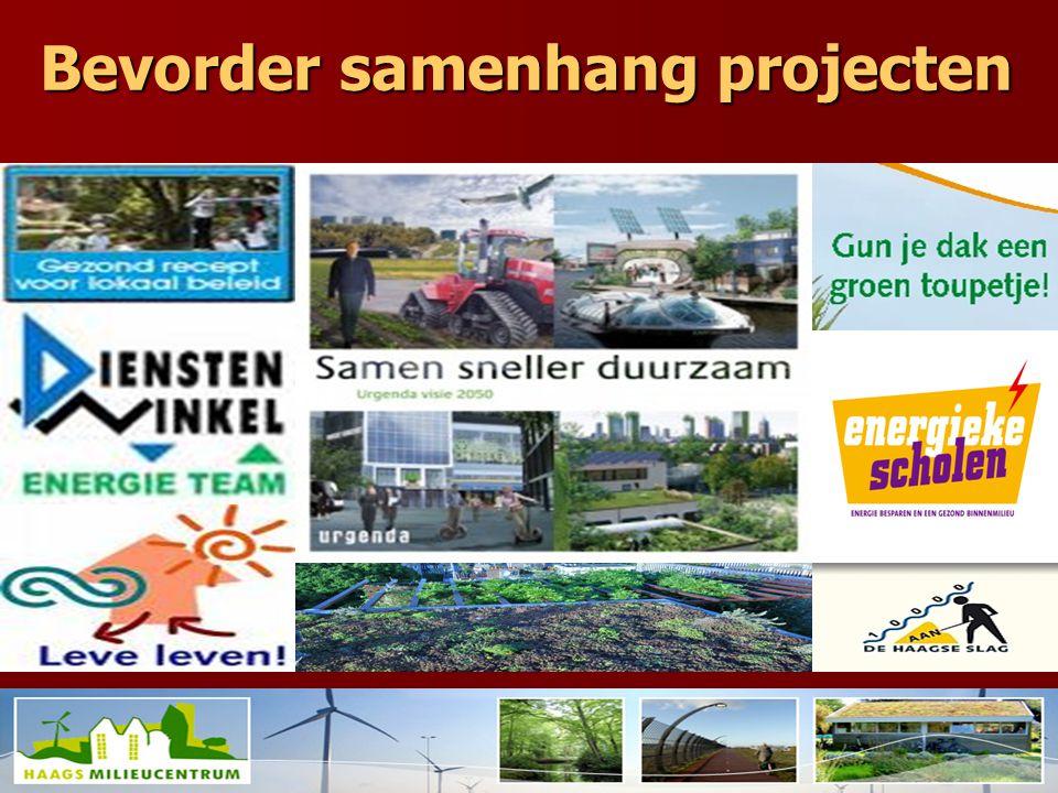 Bevorder samenhang projecten