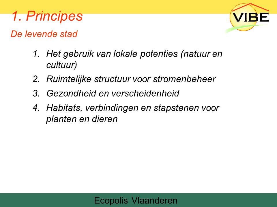1.Het gebruik van lokale potenties (natuur en cultuur) 2.Ruimtelijke structuur voor stromenbeheer 3.Gezondheid en verscheidenheid 4.Habitats, verbindingen en stapstenen voor planten en dieren Ecopolis Vlaanderen 1.