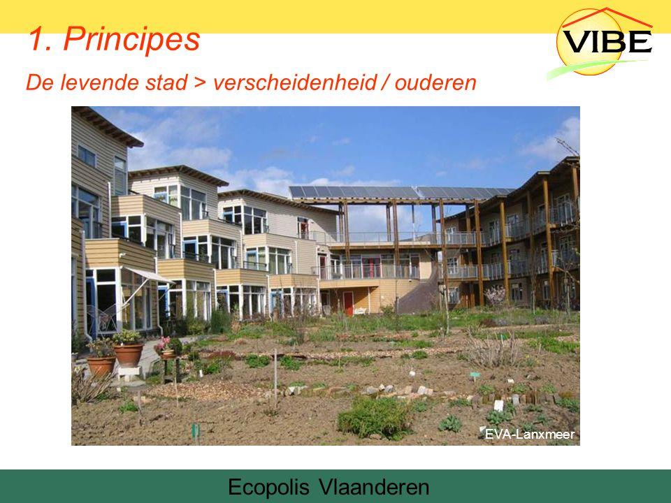 Ecopolis Vlaanderen EVA-Lanxmeer 1. Principes De levende stad > verscheidenheid / ouderen
