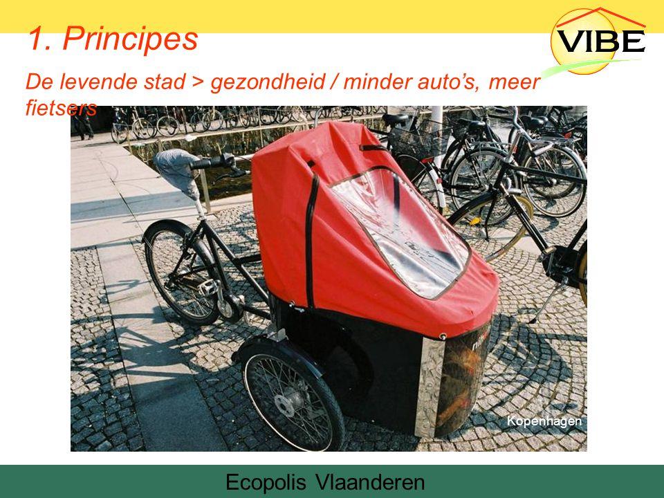 Ecopolis Vlaanderen Kopenhagen 1.