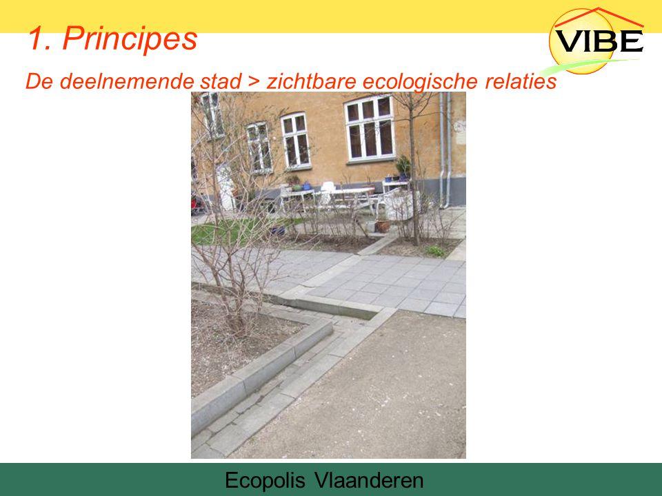 Ecopolis Vlaanderen Denemarken 1. Principes De deelnemende stad > zichtbare ecologische relaties
