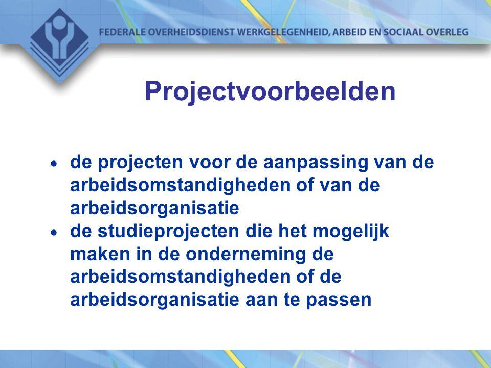 Projectvoorbeelden  de projecten voor de aanpassing van de arbeidsomstandigheden of van de arbeidsorganisatie  de studieprojecten die het mogelijk maken in de onderneming de arbeidsomstandigheden of de arbeidsorganisatie aan te passen