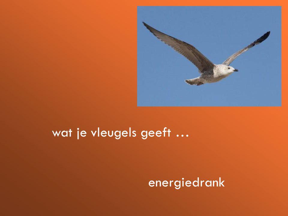 wat je vleugels geeft … energiedrank
