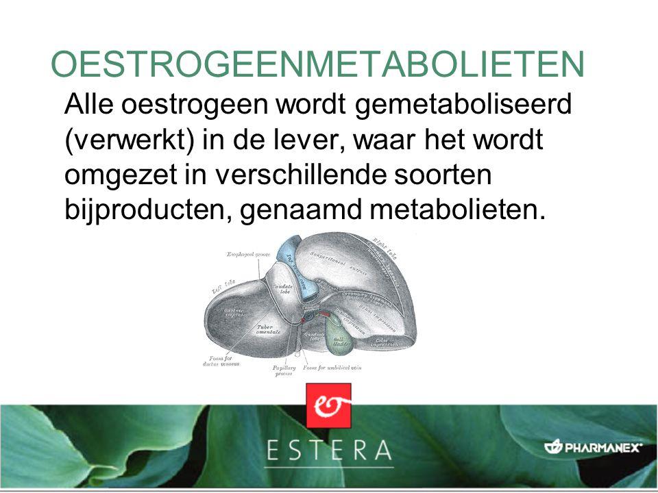 OESTROGEENMETABOLIETEN Alle oestrogeen wordt gemetaboliseerd (verwerkt) in de lever, waar het wordt omgezet in verschillende soorten bijproducten, gen