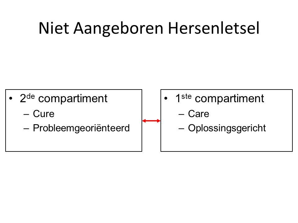 Niet Aangeboren Hersenletsel 2 de compartiment –Cure –Probleemgeoriënteerd 1 ste compartiment –Care –Oplossingsgericht