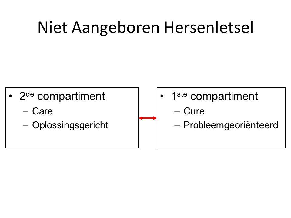 Niet Aangeboren Hersenletsel 2 de compartiment –Care –Oplossingsgericht 1 ste compartiment –Cure –Probleemgeoriënteerd