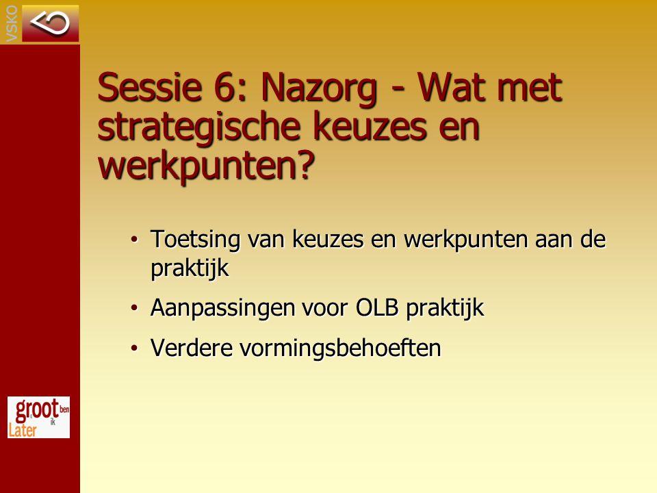 Sessie 6: Nazorg - Wat met strategische keuzes en werkpunten.