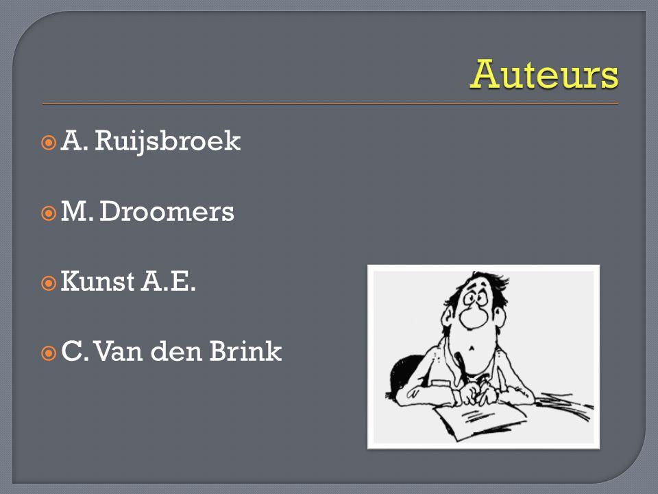  A. Ruijsbroek  M. Droomers  Kunst A.E.  C. Van den Brink