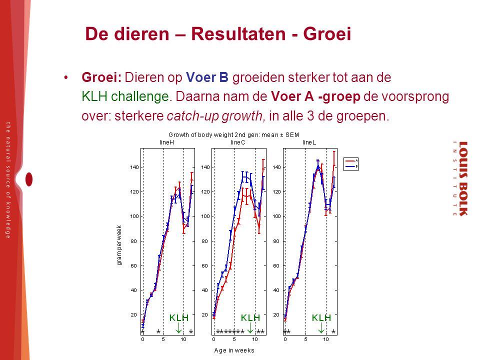 De dieren – Resultaten - Groei Groei: Dieren op Voer B groeiden sterker tot aan de KLH challenge. Daarna nam de Voer A -groep de voorsprong over: ster
