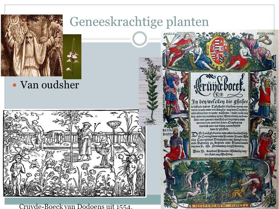 Geneeskrachtige planten Van oudsher Cruyde-Boeck van Dodoens uit 1554.