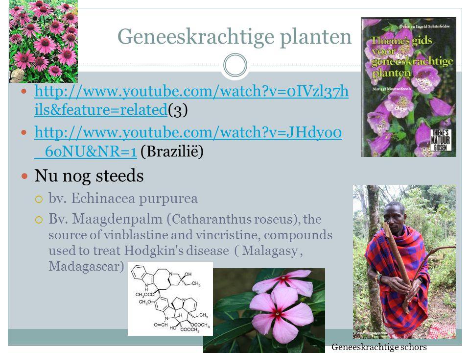 Geneeskrachtige planten http://www.youtube.com/watch?v=0IVzl37h ils&feature=related(3) http://www.youtube.com/watch?v=0IVzl37h ils&feature=related http://www.youtube.com/watch?v=JHdyo0 _6oNU&NR=1 (Brazilië) http://www.youtube.com/watch?v=JHdyo0 _6oNU&NR=1 Nu nog steeds  bv.