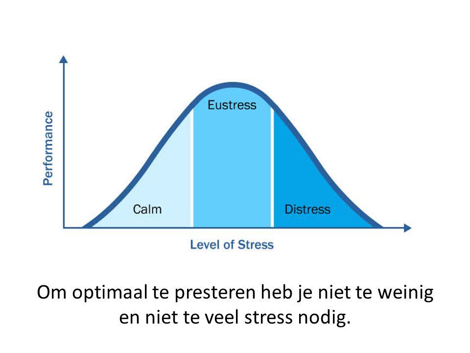 Om optimaal te presteren heb je niet te weinig en niet te veel stress nodig.