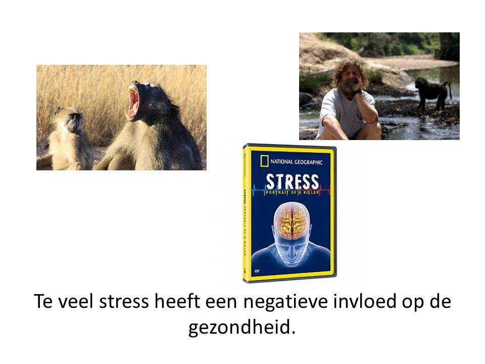 Te veel stress heeft een negatieve invloed op de gezondheid.