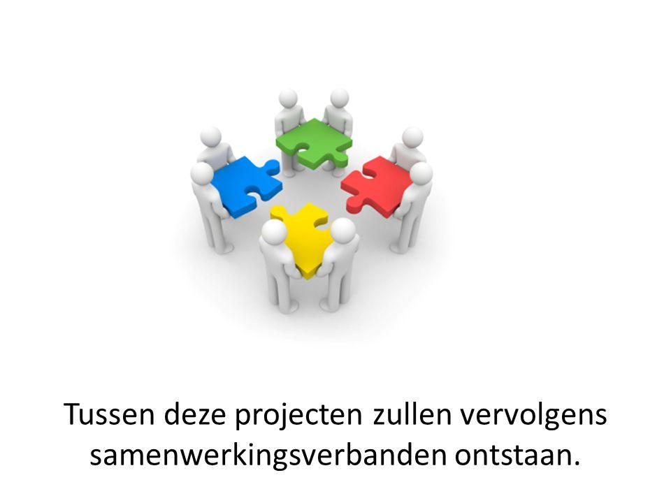 Tussen deze projecten zullen vervolgens samenwerkingsverbanden ontstaan.