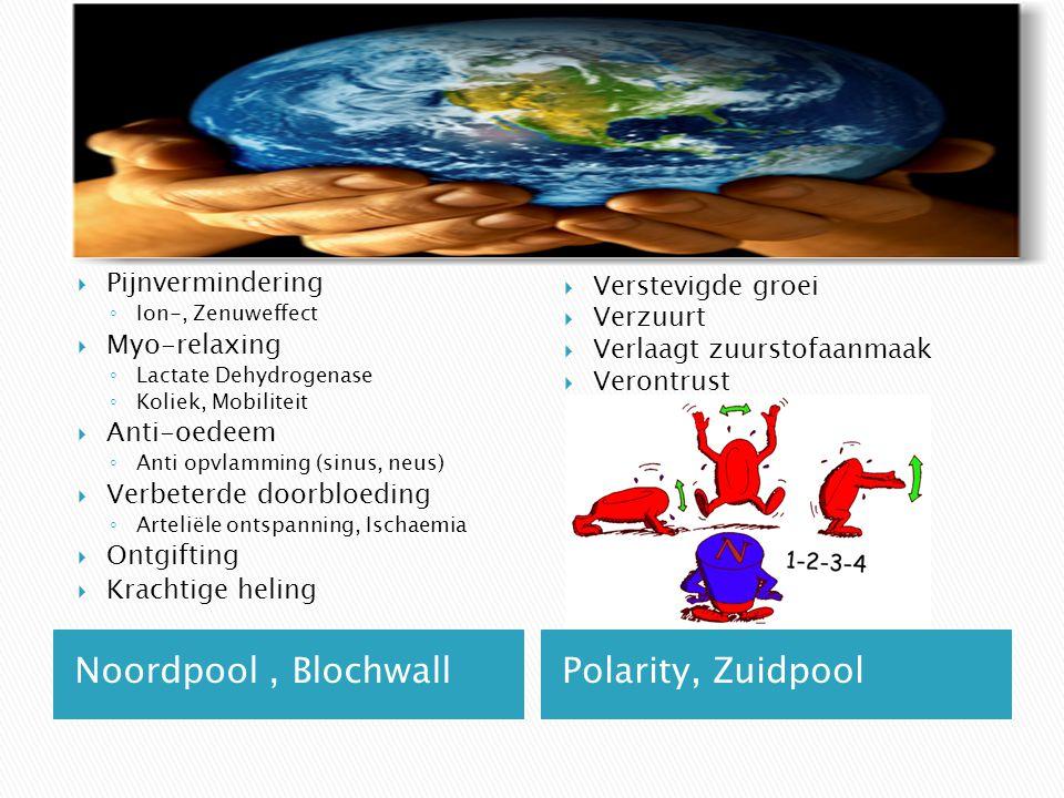Noordpool, BlochwallPolarity, Zuidpool  Pijnvermindering ◦ Ion-, Zenuweffect  Myo-relaxing ◦ Lactate Dehydrogenase ◦ Koliek, Mobiliteit  Anti-oedee