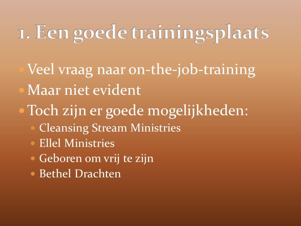 Veel vraag naar on-the-job-training Maar niet evident Toch zijn er goede mogelijkheden: Cleansing Stream Ministries Ellel Ministries Geboren om vrij te zijn Bethel Drachten