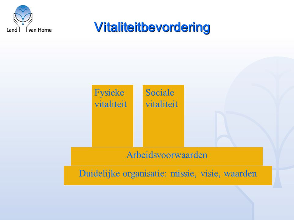 Vitaliteitbevordering Duidelijke organisatie: missie, visie, waarden Arbeidsvoorwaarden Fysieke vitaliteit Sociale vitaliteit