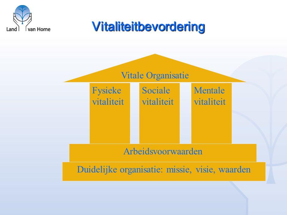 Vitaliteitbevordering Duidelijke organisatie: missie, visie, waarden Arbeidsvoorwaarden Fysieke vitaliteit Sociale vitaliteit Mentale vitaliteit Vitale Organisatie