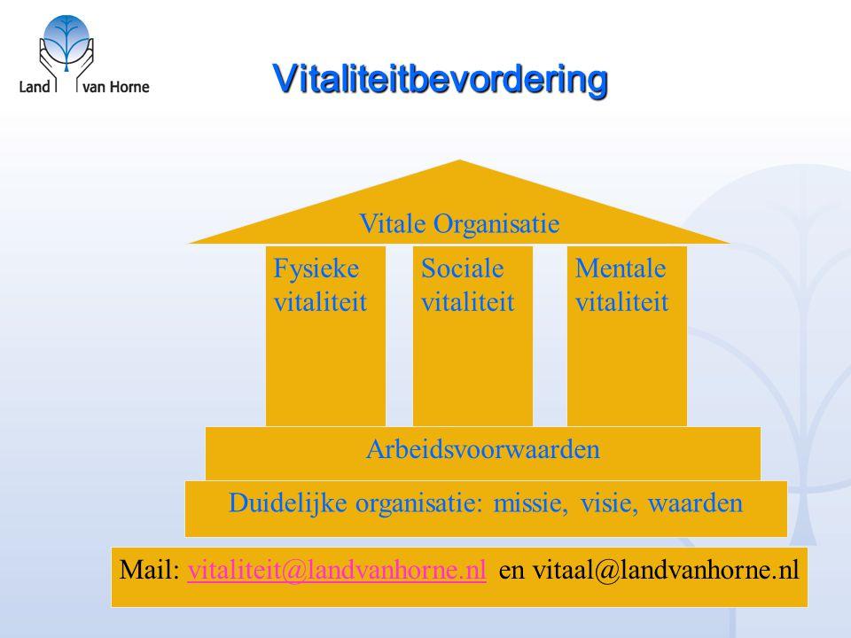Vitaliteitbevordering Duidelijke organisatie: missie, visie, waarden Arbeidsvoorwaarden Fysieke vitaliteit Sociale vitaliteit Mentale vitaliteit Vital