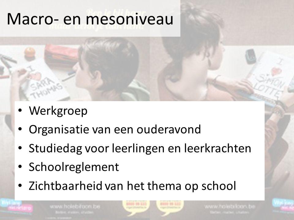 Macro- en mesoniveau Werkgroep Organisatie van een ouderavond Studiedag voor leerlingen en leerkrachten Schoolreglement Zichtbaarheid van het thema op