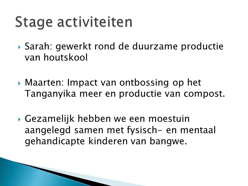  Sarah: gewerkt rond de duurzame productie van houtskool  Maarten: Impact van ontbossing op het Tanganyika meer en productie van compost.  Gezameli