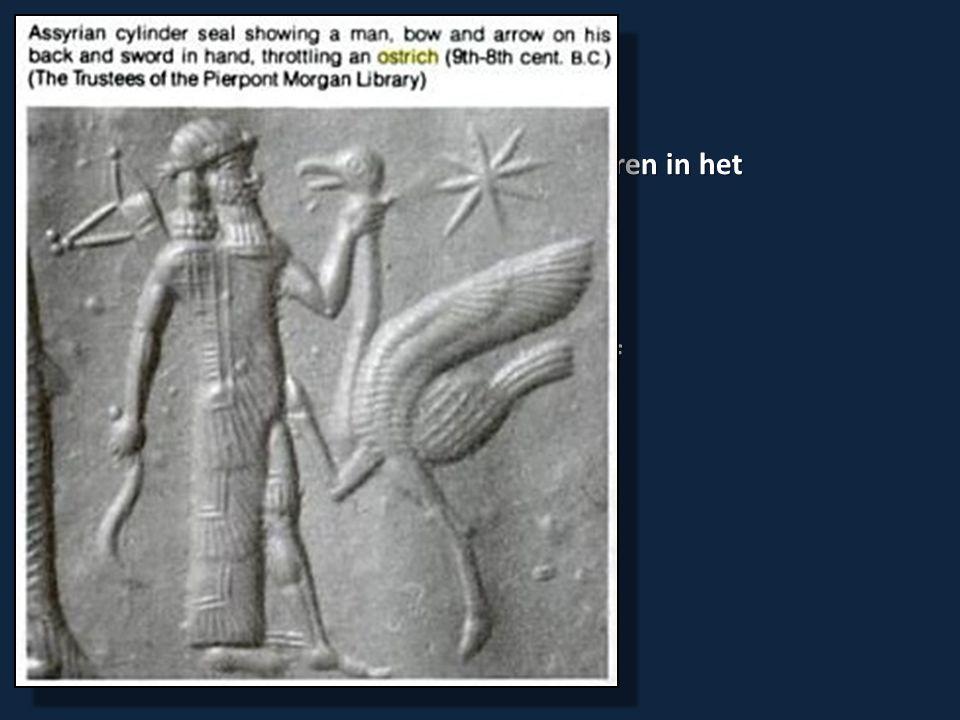 Lev.11:20-23 Gevleugelde insecten (muv sprinkhaan, krekel): bvb., vliegen, muggen Lev.
