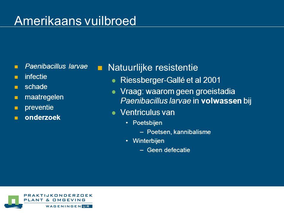 Amerikaans vuilbroed Paenibacillus larvae infectie schade maatregelen preventie onderzoek Natuurlijke resistentie Riessberger-Gallé et al 2001 Vraag: