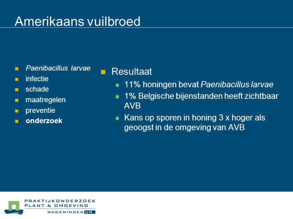 Amerikaans vuilbroed Paenibacillus larvae infectie schade maatregelen preventie onderzoek Resultaat 11% honingen bevat Paenibacillus larvae 1% Belgisc