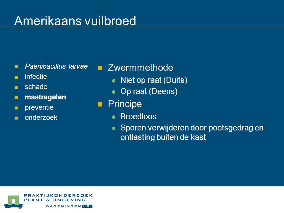 Amerikaans vuilbroed Paenibacillus larvae infectie schade maatregelen preventie onderzoek Zwermmethode Niet op raat (Duits) Op raat (Deens) Principe B