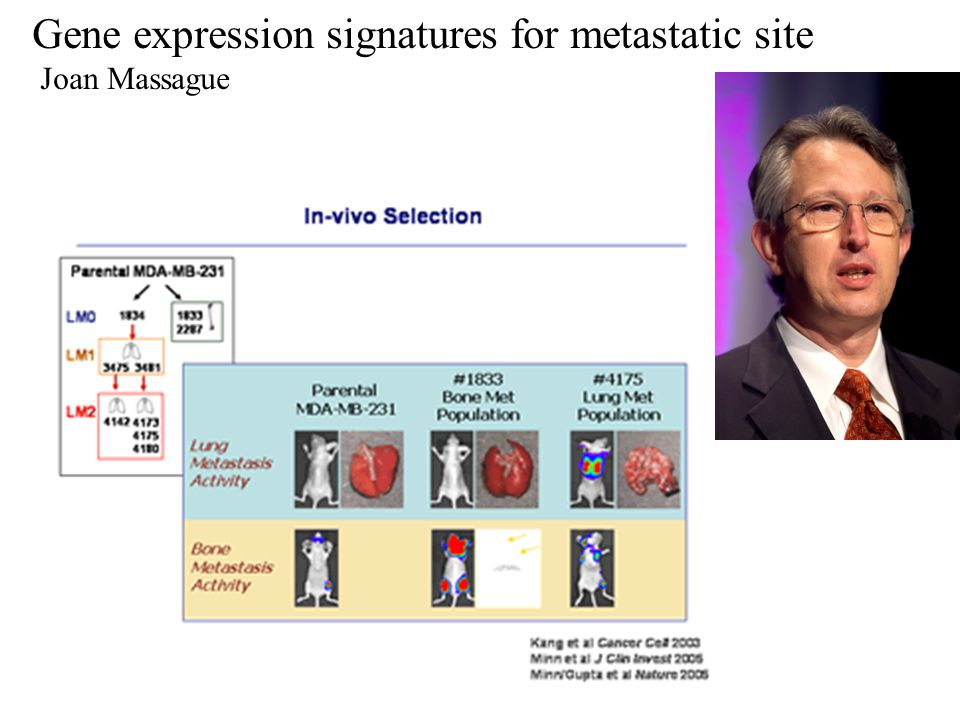 Gene expression signatures for metastatic site Joan Massague