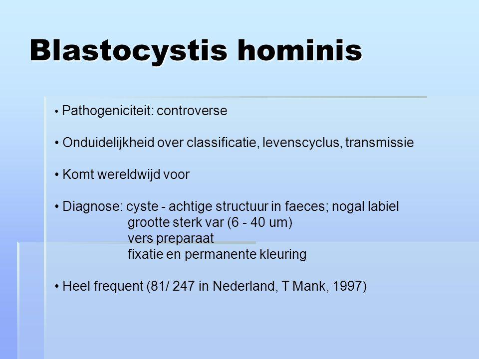 Blastocystis hominis Pathogeniciteit: controverse Onduidelijkheid over classificatie, levenscyclus, transmissie Komt wereldwijd voor Diagnose: cyste - achtige structuur in faeces; nogal labiel grootte sterk var (6 - 40 um) vers preparaat fixatie en permanente kleuring Heel frequent (81/ 247 in Nederland, T Mank, 1997)