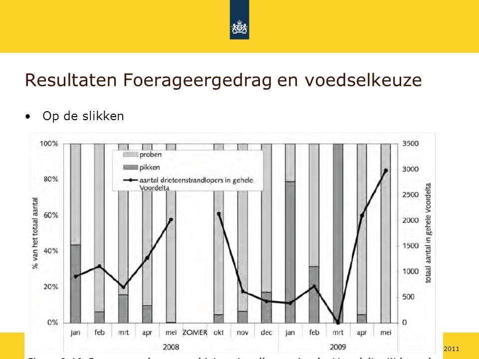 Rijkswaterstaat 1518 mei 2011 Resultaten Foerageergedrag en voedselkeuze Op de slikken
