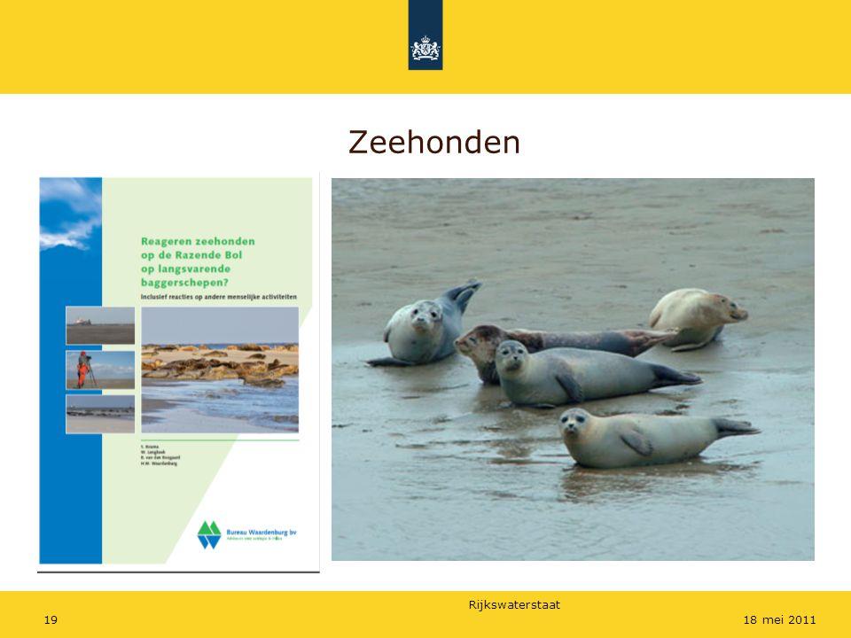 Rijkswaterstaat 1918 mei 2011 Zeehonden
