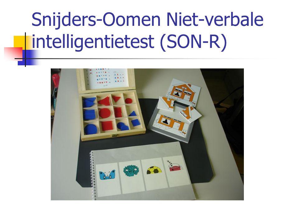 Snijders-Oomen Niet-verbale intelligentietest (SON-R)