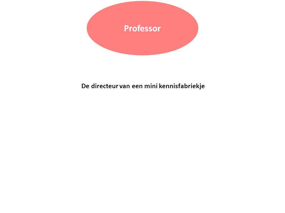 Professor De directeur van een mini kennisfabriekje