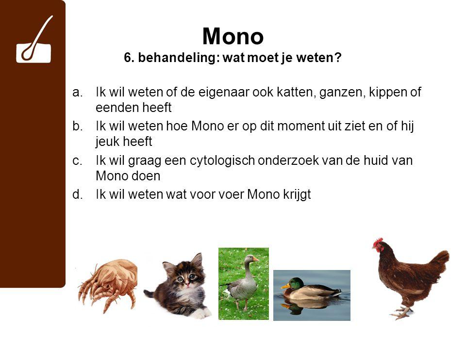 Mono 6.behandeling: wat moet je weten.