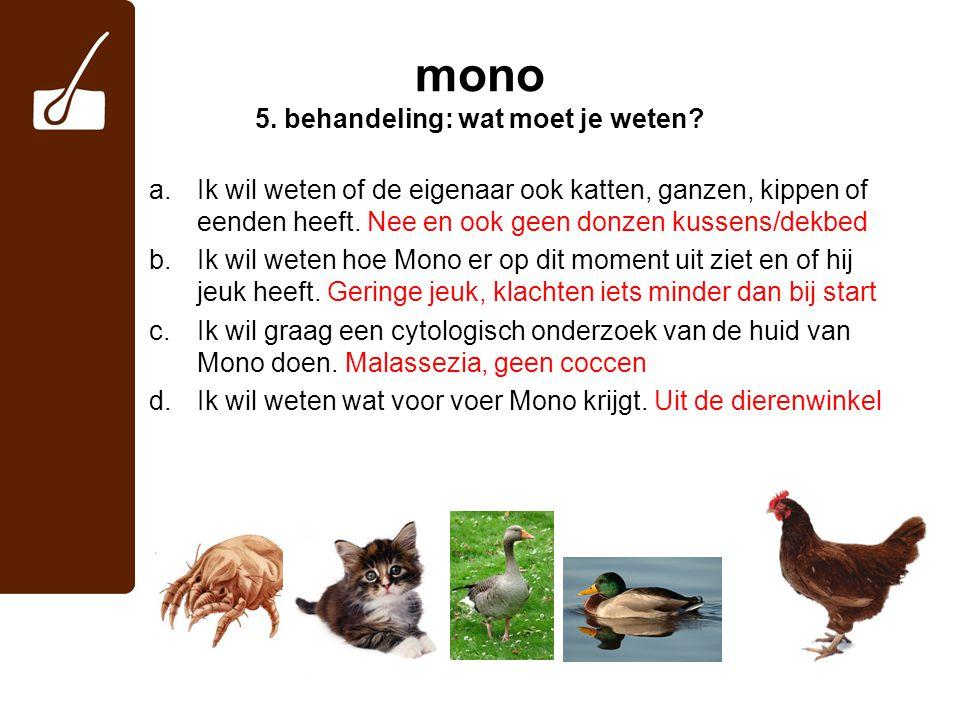 mono 5.behandeling: wat moet je weten.