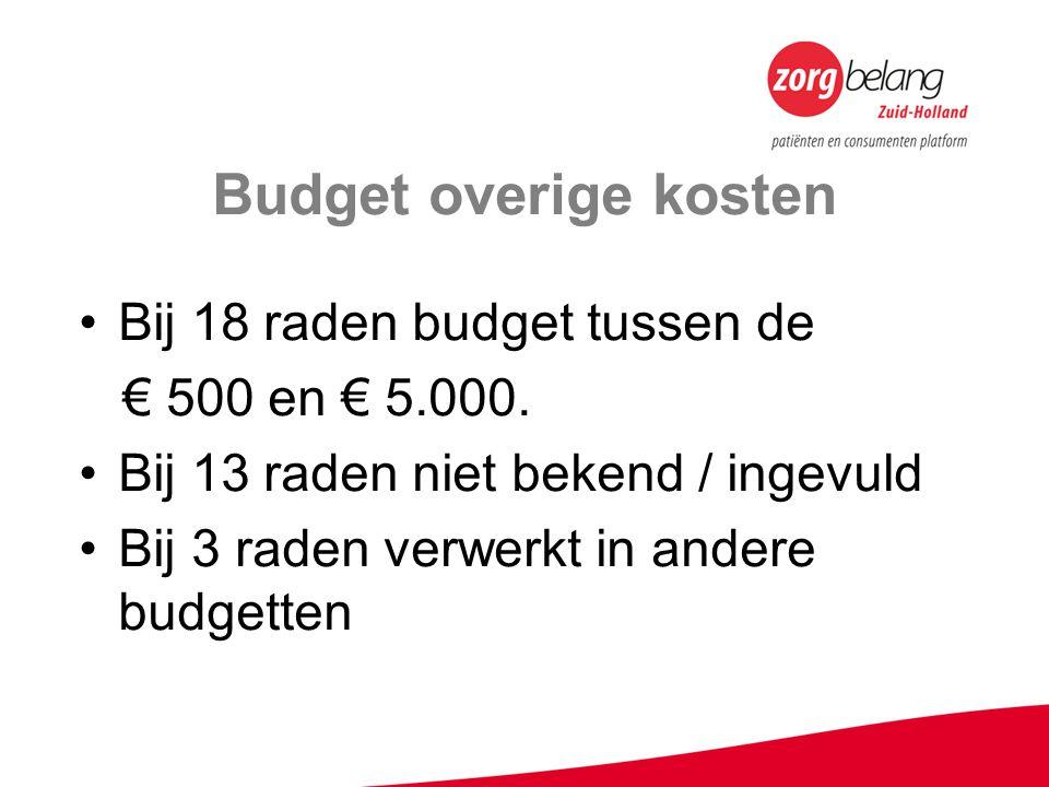 Budget overige kosten Bij 18 raden budget tussen de € 500 en € 5.000. Bij 13 raden niet bekend / ingevuld Bij 3 raden verwerkt in andere budgetten