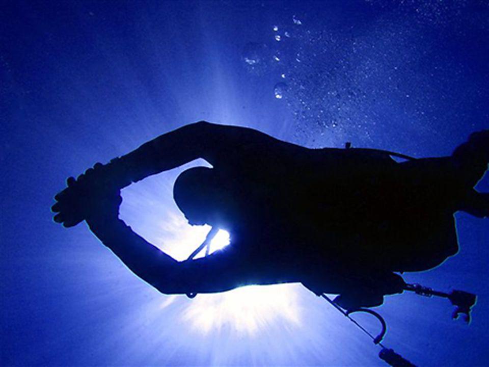 Het Groot Barrièrerif is een paradijs voor duikers.