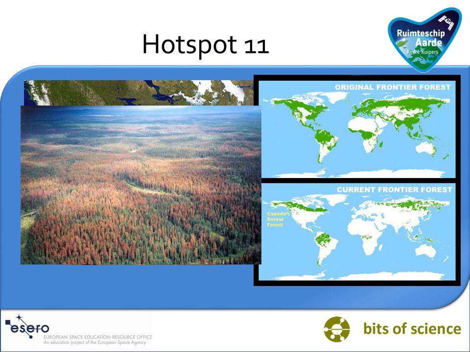 Vraag HOTSPOT TAIGA Er gaat veel aandacht uit naar tropische regenwouden, ondermeer omdat die 's werelds hoogste biodiversiteit herbergen.