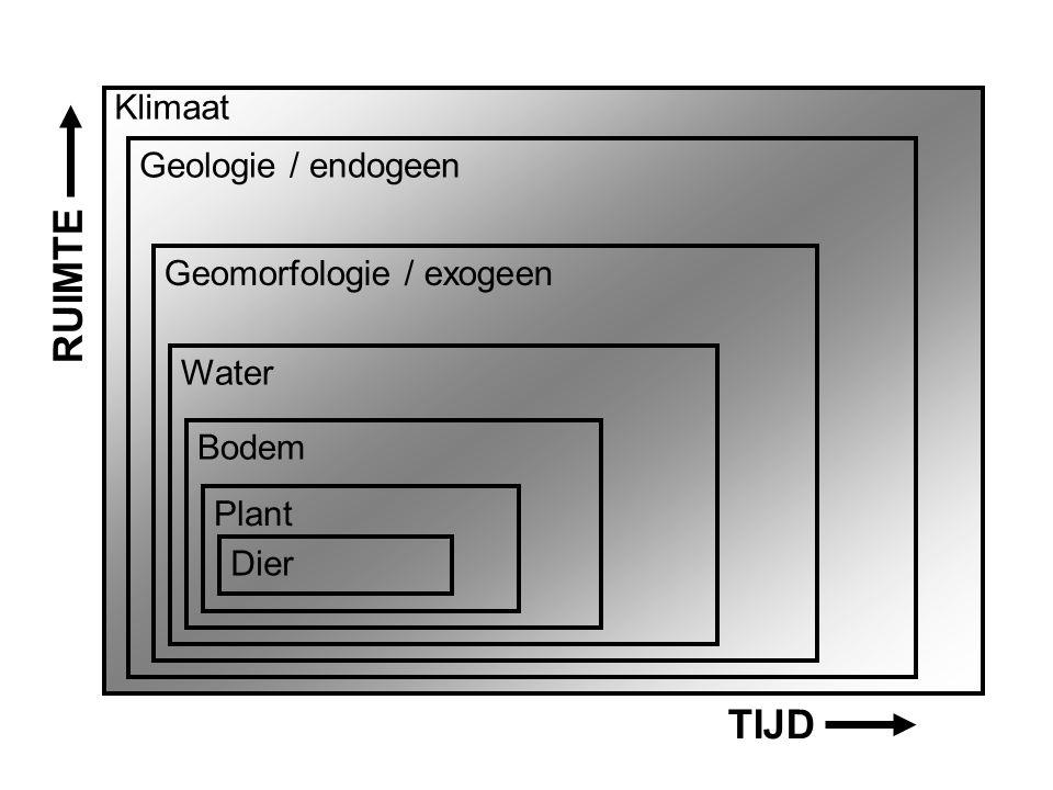 Aardwetenschappen Klimaat Geologie / endogeen Geomorfologie / exogeen Water Bodem Plant Dier TIJD RUIMTE