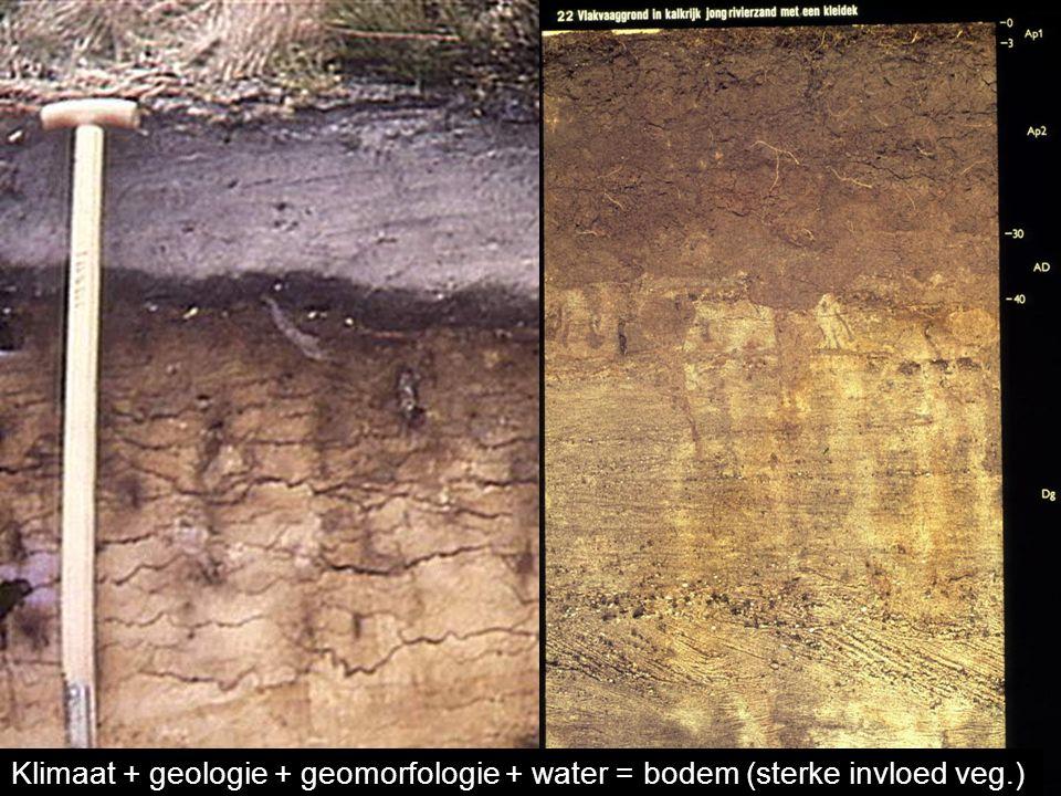 Aardwetenschappen Klimaat + geologie + geomorfologie + water = bodem (sterke invloed veg.)
