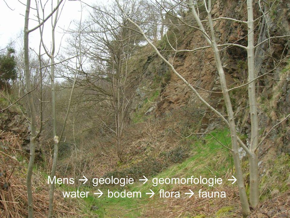 Aardwetenschappen Mens  geologie  geomorfologie  water  bodem  flora  fauna