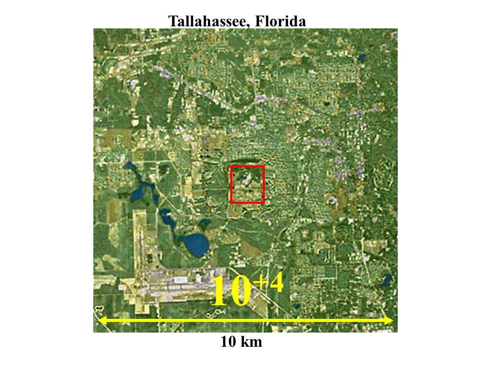 10 +4 10 km Tallahassee, Florida